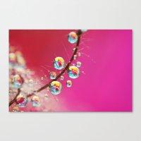 Smoking Pink Drops Canvas Print