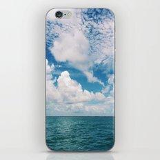 Mosquito Reef iPhone & iPod Skin