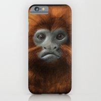 Golden Lion Tamarin iPhone 6 Slim Case