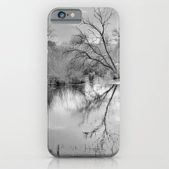 Branches that embrace the water iPhone & iPod Case
