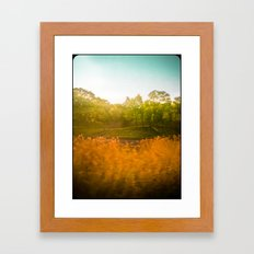 Summer from a Train Framed Art Print