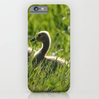 Goslings In The Grass iPhone 6 Slim Case