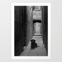 Alley Hound Art Print