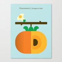 Fruit: Persimmon Canvas Print