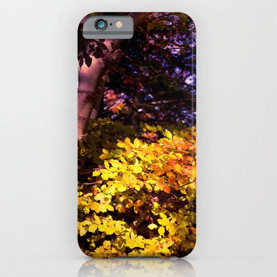 Yellow fall leaves iPhone & iPod Case