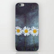 Three Marguerites iPhone & iPod Skin
