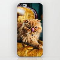 Toofi iPhone & iPod Skin