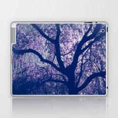 Cherry Blossom Blue Laptop & iPad Skin