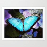 Morpho Bleu Art Print