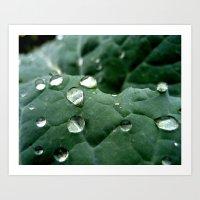 Running Droplets Art Print