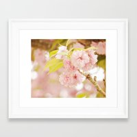 Pink Flower Photography | Shabby Chic Blossoms Framed Art Print