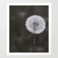 Wishes -Unplucked Art Print