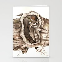 Sleeping Raccoon in Tree Hollow Stationery Cards