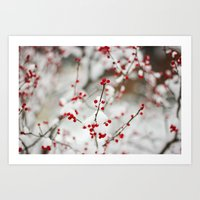 Winter Beauty Art Print
