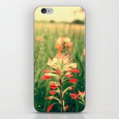Wild flowers! iPhone & iPod Skin