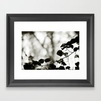 Shadowplay Framed Art Print