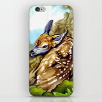 Fawn Parked In The Trees iPhone & iPod Skin