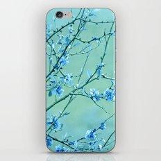 blue may iPhone & iPod Skin