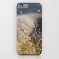 In The Desert iPhone 6 Slim Case