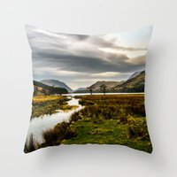 Feeding the waters Throw Pillow