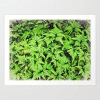 Moku Hanga Style Ferns  Art Print