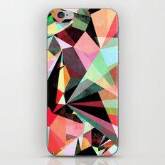 Colorflash 6 iPhone & iPod Skin