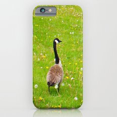 Goose in a field of flowers iPhone 6 Slim Case
