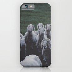 Meh iPhone 6 Slim Case