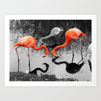 Matthew Cole Photography Art Print