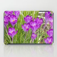 Spring crocus  iPad Case