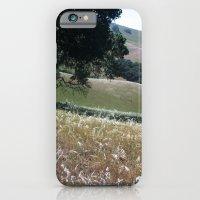 California Live Oak iPhone 6 Slim Case