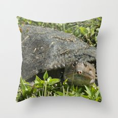 Soft Back Turtle  Throw Pillow