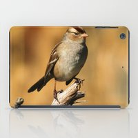 White-crowned Sparrow iPad Case