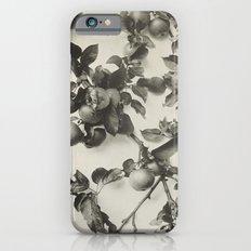 Vintage Apple Botanical iPhone 6 Slim Case