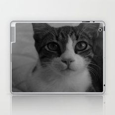 CAT. Laptop & iPad Skin