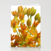 Little Orange Flowers Stationery Cards