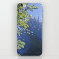 Sun/Trees iPhone & iPod Skin