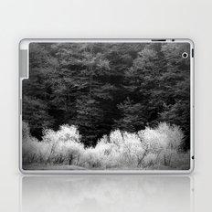 The Forest Keeps Secrets Laptop & iPad Skin