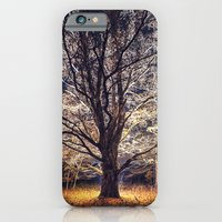 Reaching into the Night iPhone 6 Slim Case
