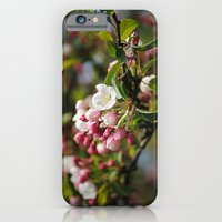 Apfelblüten  iPhone 6 Slim Case