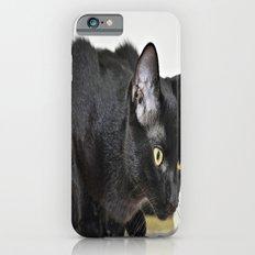 Beautiful Black Cat Slim Case iPhone 6s