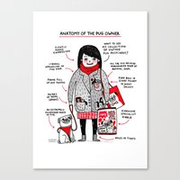 Anatomy Of The Pug Owner Canvas Print