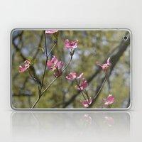 dogwood in bloom Laptop & iPad Skin