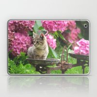 Little Tiger on the scales Laptop & iPad Skin