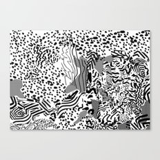 snow interference Canvas Print