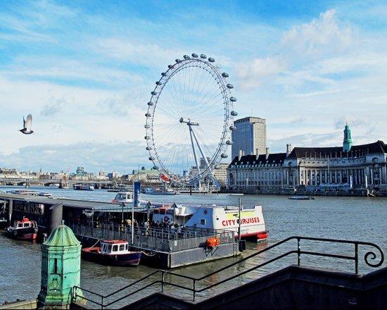 London Eye View Canvas Print