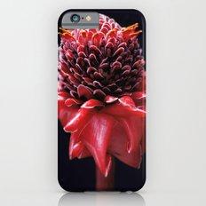 Scarlet Slim Case iPhone 6s