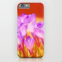 Easter Crocus iPhone 6 Slim Case