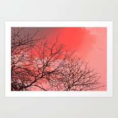 Branches in the Red Sky Art Print