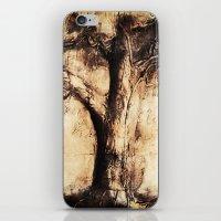 Burnt Tree iPhone & iPod Skin